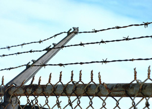 barbed wire sm