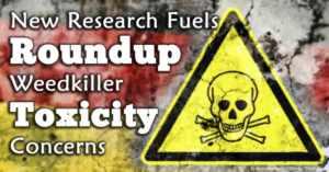 roundup toxic